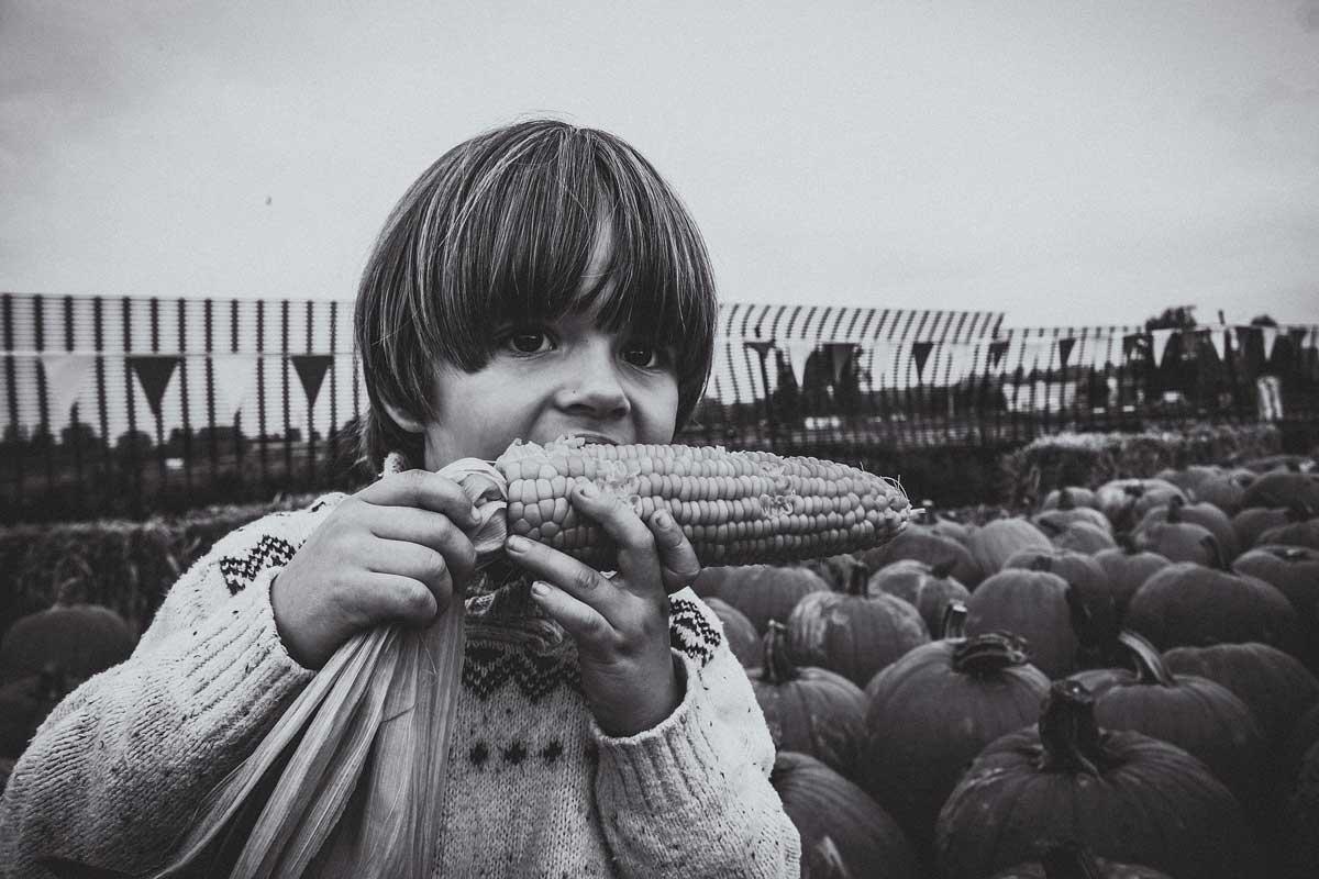 Jean enfant champ maïs